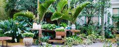 Escolhendo plantas - Como escolher plantas para o jardim Os prazeres da jardinagem são tantos quanto a extensa variedade de plantas e flores que, com um pouco de carinho e manutenção contínua, transformam qualquer pedaço de terra num jardim encantado. Um dos primeiros passos é escolher as plantas certas… veja como! ... - http://www.datalogger.com.br/ecoblog/2017/11/12/escolhendo-plantas/