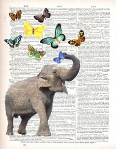 Vintage Room Print Elephant with butterflies