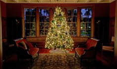 Holiday Gift Guide from the Jekyll Island Club Hotel. Christmas Vacation, Christmas And New Year, Christmas Holidays, Christmas Tree, Hotels In Georgia, Jekyll Island Club Hotel, Hotel Decor, Island Resort, Island Weddings