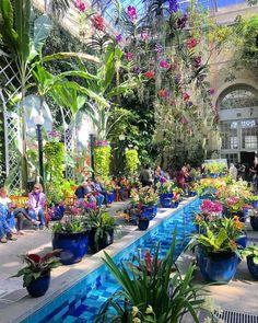 @tylerkcalder - Atrium in the United States Botanic Garden - Free attraction on the National Mall in Washington, DC
