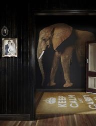 Elephant mural - black walls - keep calm - Alfred & Constance, Brisbane - image by Florian Groehn