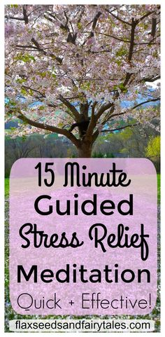 This Guided Meditation for Stress Relief is a simple way to manage stress. This quick stress relief activity will have you feeling relaxed in just 15 minutes! Meditation Scripts, Stress Relief Meditation, Best Meditation, Natural Stress Relief, Meditation For Beginners, Meditation Techniques, Guided Meditation, Relaxation Techniques, Ways To Manage Stress