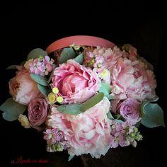 Cutie 20 cm  #flowers #box #peony #peonies #scent #scentofawoman #blush #pink #blossom #flowersbox #vip #flowersinabox #madewithjoy #paulamoldovan #livadacuvisini #buchet #cutie #flori #cutiecuflori #floriincutie #bujori #roz Flower Boxes, Flowers, Pink Blossom, Peony, Blush Pink, Vip, Floral Wreath, Wreaths, Decor