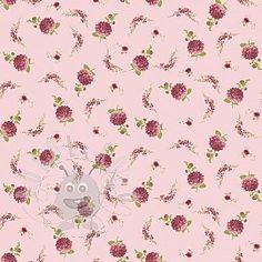 Tamarix Treasure rose Rose, Pink, Roses