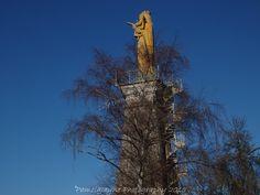 Statue de la Vierge #Poitiers #France https://www.facebook.com/PamelaJaynePhotography