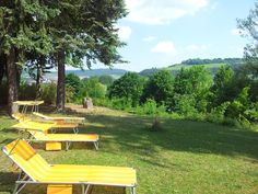 Durch unseren 16.000 qm großen Hauspark führen Spazierwege mit Ruhebänken. Liegewiesen laden zur Erholung und Entspannung ein.