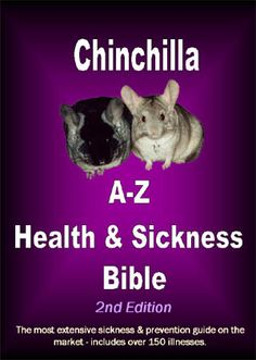 Chinchilla A-Z Health and Sickness Bible. An AMAZING ebook listing over 150 illnesses, disease and sickness a chinchilla can acquire. A 'must-have' chinchilla Guinea Pig Toys, Guinea Pig Care, Guinea Pigs, Chinchilla Facts, Chinchilla Care, Hammock Diy, Medical Photos, Horse Care, Funny Art