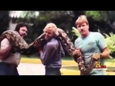 Man Eating Anaconda British Broadcasting Corporation (BBC) documentary 2015