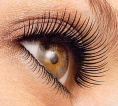 Line the root of your eyelashes with eyeliner. Curl your eyelashes. Use a brush to dust your eyelashes with translucent powder (Adding translucent powder to your eyelashes before mascara makes them look thicker and longer!) Put on mascara. Beauty Make-up, Just Beauty, All Things Beauty, Beauty Secrets, Beauty Hacks, Hair Beauty, Fashion Beauty, Beauty Products, Beauty Ideas