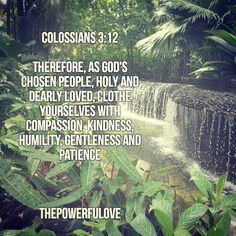 Colossians 3:12  Therefore as God's chosen people holy and dearly loved clothe yourselves with compassion kindness humility gentleness and patience.  #quotesoftheday #quotes #quote #alkitab #bible #biblequotes #bibleverse #tbt #l4l #instagood #instagram #water #love #positive #positivevibes #positivethinking #heart #jesus #best #motivasi #motivationalquotes #motivation #inspiration #inspiring #inspirasi #inspirationalquotes  #bestoftheday #photooftheday  #pinterest #IFTTT # #IFTTT