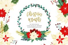 Christmas Floral Clipart by Sunflower Day Love on Watercolor Clipart, Floral Wreath Watercolor, Christmas Flowers, Christmas Clipart, Clips, Floral Illustrations, Hand Lettering, Clip Art, Floral Wreaths