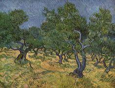 uliveto Van Gogh