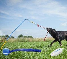 Rope Pulling Dog Toy With Tennis Ball Thrower and Clicker       Deal of the day >>>   http://amzn.to/2cxB6YX