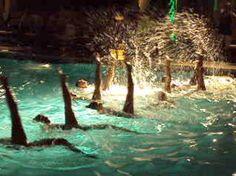 Water Ballet Show