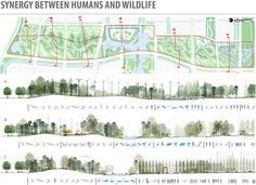 2013ASLA规划设计荣誉奖 - Ningbo Eco-Corridor - 谷德设计网