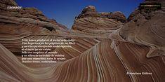 FRANCISCO GÁLVEZ. Erosión: Ni la hosca piedra ni el metal más noble. Una hoja seca en las páginas de un libro...