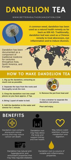 Dandelion Tea: Benefits, Side Effects, How to Make & Where to Buy