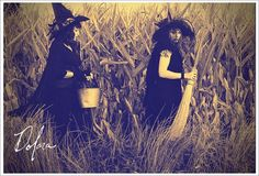 field of witches