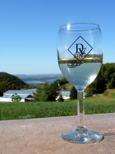Danzinger Vineyards & Winery | Alma WI | WISCONSIN Great River Road