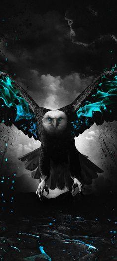 Eagle Design, Cool Wallpaper, Designer Wallpaper, Eagles, Bald Eagle, Owl, Batman, Superhero, Awesome