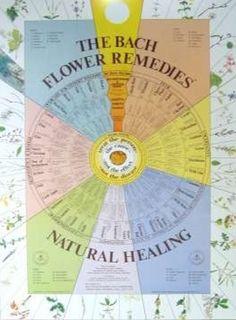 Bach Flower Chart