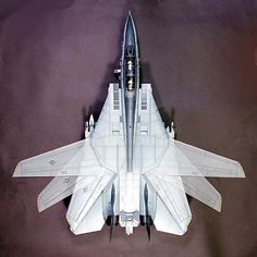 Arrow-shaped wing found on combat aircraft; the angle it forms with the fuselage can be changed in flight.