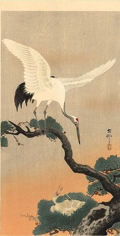 Japanese Crane On Pine (Green) Branch, By Ohara Koson, Japanese Print, Color Woodcut Poster Print x Japanese Artwork, Japanese Painting, Japanese Prints, Ohara Koson, Arte Ninja, Japanese Crane, White Crane, Art Chinois, Art Asiatique