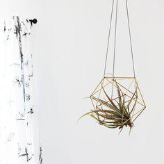 Brass Orb Himmeli / Modern Hanging Mobile / Geometric Sphere / Air Plant Hanger / Minimalist Home Decor