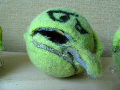 Tennis Ball Face : Barf, via Flickr. (run over by a lawnmower)