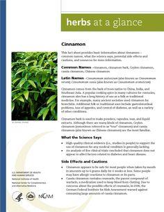 Cinnamon. Full document available at http://nccam.nih.gov/health/herbsataglance.htm