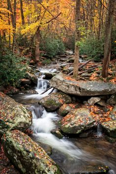 """about-usa: """" Great Smoky Mountains National Park - North Carolina - USA (by Steve Ornberg) """" Beautiful Waterfalls, Beautiful Landscapes, Landscape Photos, Landscape Paintings, Outdoor Pictures, Forest Path, Mountain Landscape, Mountain Art, Seen"""