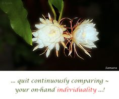 ... quit continuously comparing ~ your on-hand #individuality ...!