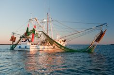 so we made a second attempt to photograph working shrimpers in port ...