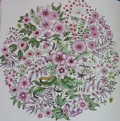 Secret Garden by Johanna Basford – Colored by Joan