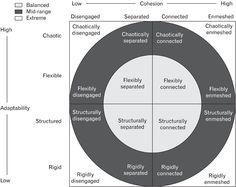 SWRK 643: FACES III- Olson Circumplex Family Model. Evidence Based Assessment Model