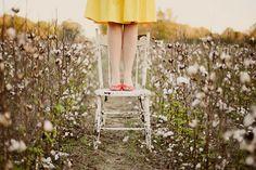 photoshoot in cotton field
