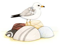 Seagull by Afsaneh                                                                                                                                                                                 More