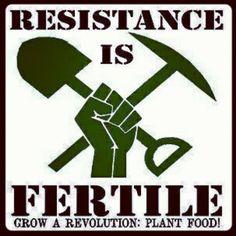 paintingarevolution:    Grow a revolution! Plant food! #anarchism #vegan #revolution (Taken with instagram)