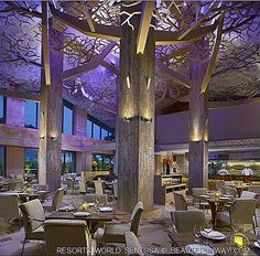 Forest restaurant Equarius Hotel  Sam Long RWS Sentosa award winning celebrity chef contemporary Chinese Thai cuisine