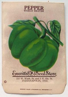 EVERITT'S SEED STORE, Pepper 241, Vintage Seed Packet