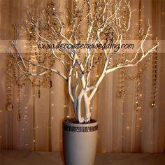 Wishing tree inspiration