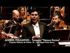 """Andrés Veramendi - Turandot """"Nessun Dorma""""   2015"""