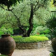 Browse landscaping ideas, discover eight landscape design rules and get tips from landscape design experts. Get design ideas for creating your dream front or backyard landscape. Outdoor Ponds, Ponds Backyard, Garden Pool, Backyard Landscaping, Outdoor Gardens, Landscaping Ideas, Cacti Garden, Herb Garden, Garden Art