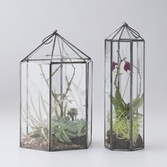 Glass and zinc hexagonal terrariums serve as beautiful mixed-media display for plants, pillar candles or found objects. A hinged side door allows for easy access. Top hook for hanging. Made in India.