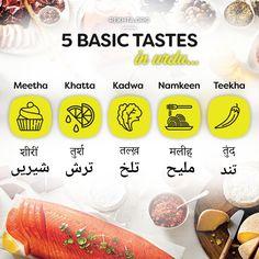 Five Basic Tastes in Urdu