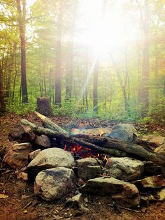Camping in the George Washington National Forest, Virginia. Lots of great campsites near the Massanutten trailhead.