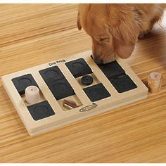Think I'm gonna get one of these for Miss Kira...Poor Ace would would be confused by what it was for lol
