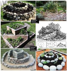 Bunch of different set up for spiral garden Herb Spiral, Spiral Garden, Herb Garden, Plants In Bottles, Garden Paving, Garden Structures, Raised Garden Beds, Garden Inspiration, Backyard Landscaping