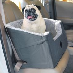 Bucket Dog Booster Seat