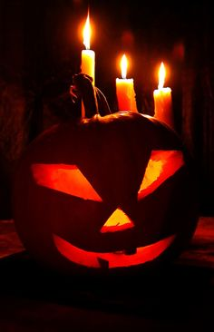As our favorite holiday, Halloween is very special to us!  We created this website as a way of providing basic Halloween tips and ideas that include links to more detailed information about them including halloween decorations, halloween costume suggestions, pumpkin carving tips, halloween recipes and much more!   We hope you enjoy the Halloween Scary Ideas website as much as we did making it!